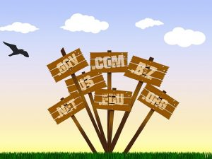 günstige Domains über Vergleichsportale Expert